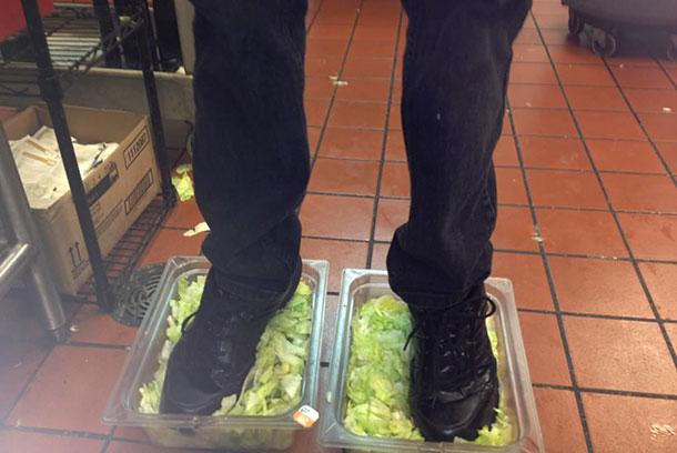 2-standing-in-lettuce